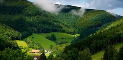 Discover the Beautiful Black Forest