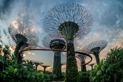 Garden by the Bay , Singapore